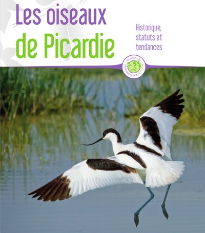 oiseaux picardie